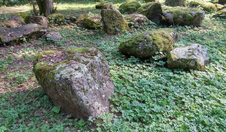 Donatas Petrošius. Akmenų prieglauda