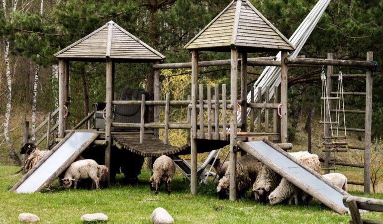 Jaunieji husarai – įsimintinas vasaros nuotykis mažiesiems