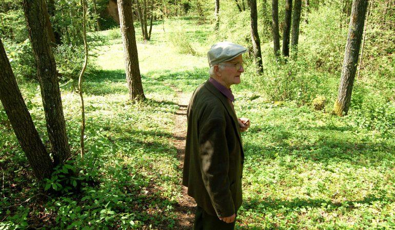 Henrikas Gudavičius. Atlaidų varpams gaudžiant