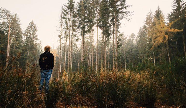 """""""Gydanti tyla"""": kaip surasti kelią į vidinę ramybę"""