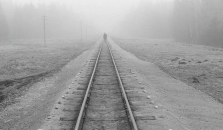 Kadras iš Henriko Šableviciaus filmo Kelionė ūkų lankomis