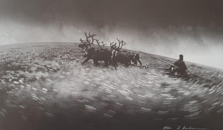 Ilgas kelias. Jugros tundra, 1975
